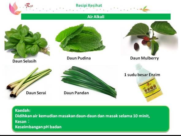 Malay Slide9