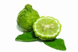 马蜂橙/麻疯柑 (Kaffir Lime)