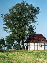 Kapelle Rückamp