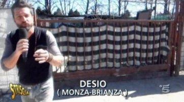 ns-desio-striscia1