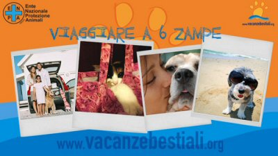 NS-sito vacanze bestiali