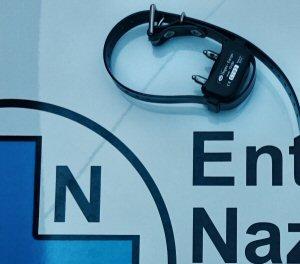 collare elettrico-NS