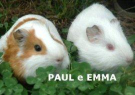 NS_paul-emma