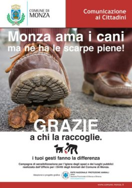 manifesto scarpe-NS