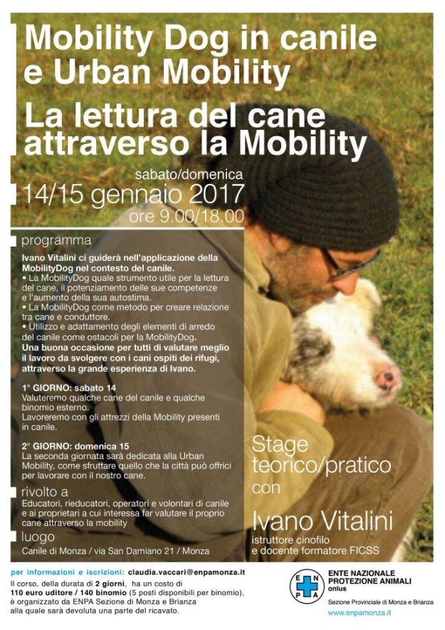 locandina-seminario_2017_1-vitalini-690