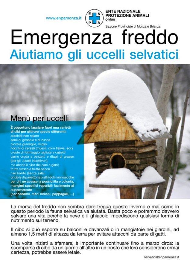 LOCANDINA-SITO-690-emergenza freddo 16