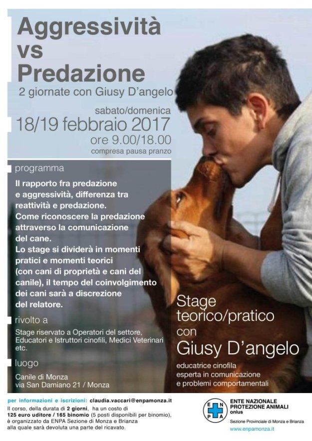 NS-690-2017-Giusy D'Angelo-corretto