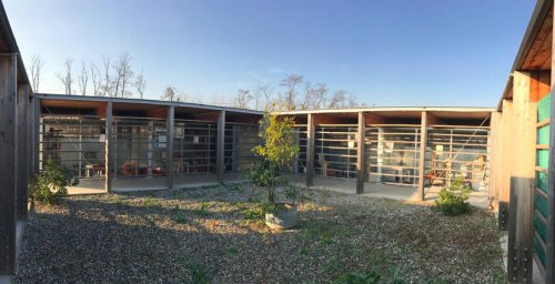 cortile oggi 8-3_1170x600