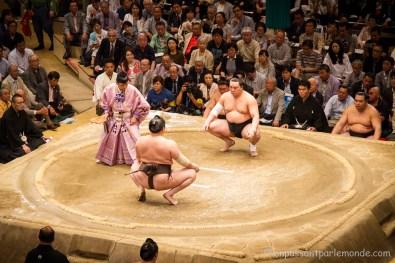 Japon-Tokyo-Tournoi-sumo-19