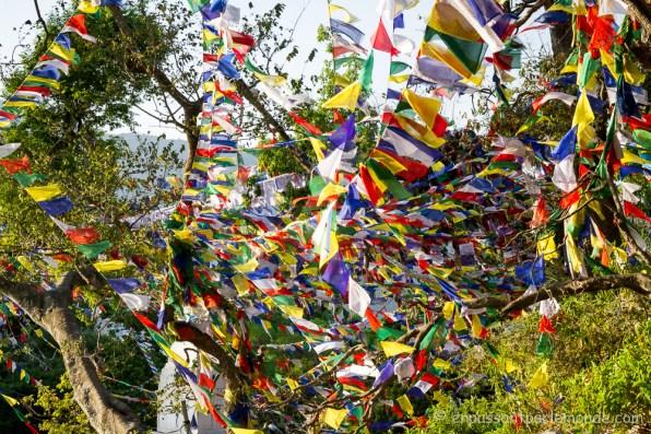 Népal - Katmandou - Swayambunath-22