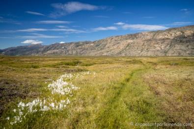 Groenland-ACT-partie-3-21