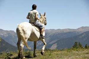 vallnord, pal, caballo, enpistas.com