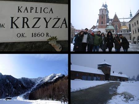 Excursiones variadas en Polonia.