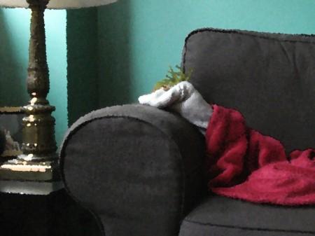 la-siesta-del-calcetin