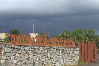 museo de la fauna salvaj