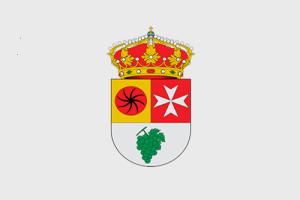 españa_Zamora_Cañizal (BANDERA)