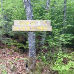 ruta vieja del monte