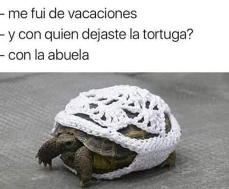 ganchillo tortuga