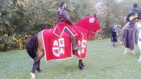 denuncia mercado medieval mansilla de las mulas