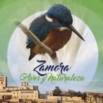 zamora aves y naturaleza final