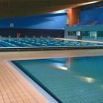 piscina la palomera