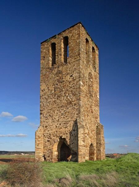 Torre de fresno de la Vega
