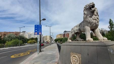 leon puente leones