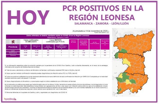 PLANTILLA PCR 15 NOVIEMBRE REGIÓN LEONESA SALAMANCA, ZAMORA Y LEÓN