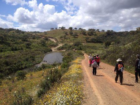 Algarve a ritmo de pedal