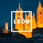 vídeo promocional de león