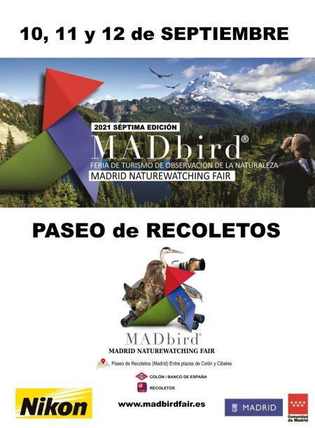 MAD BIRD FAIR