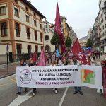 Conceyu País Lliones ha participado en la manifestación por la oficialidad del asturiano
