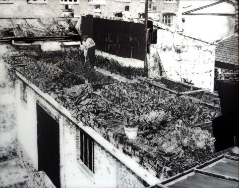 Jean-Marc CERINO, Jardin potagé sur un toit de Paris, 1939, acrylique, verre, 2012