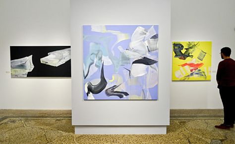 Anne Jallais, Turbulences, paysages extensibles à l'espace Bagouet