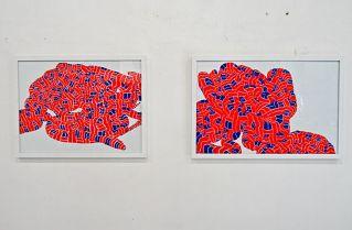 B.O.A. Atelier Diane Guyot - Pareidolie 2014