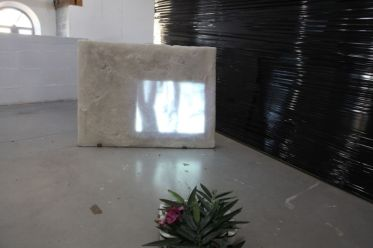 Gaëlle Choisne, Crocodile hunters, installation et projection 16/9, 6'44 2013 © D
