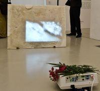Gaëlle Choisne, Prix Felix Sabatier 2013 - Musée Fabre, Montpellier