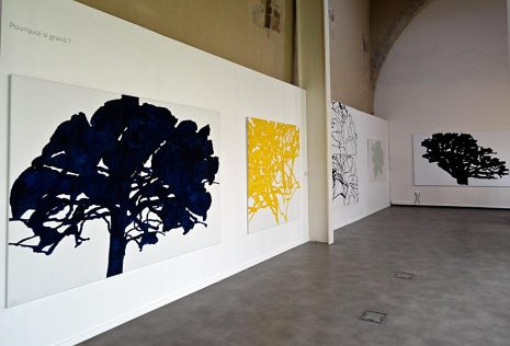 Alexandre Hollan Questions aux arbres d'ici à Lodève - Pourquoi si grand