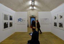 Alexandre Hollan Questions aux arbres d'ici à Lodève - vue de l'exposition 01