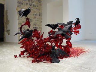 Javier Pérez, Carroña (Charogne), 2011 01 - Vanités à la Maison des Consuls – Les Matelles, Grand Pic Saint-Loup