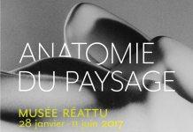 Anatomie du paysage, au musée Réattu, Arles