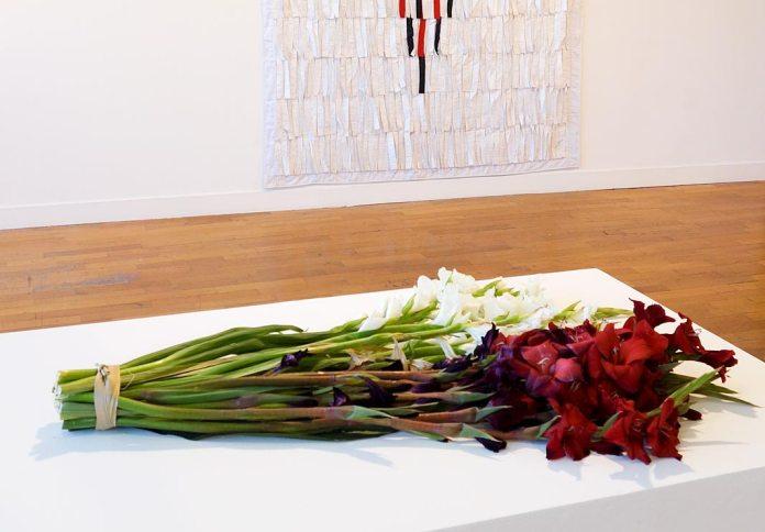 Kapwani Kiwanga, Flower for Africa, Algeria - Beautiful Africa à la Galerie du 5e – Marseille