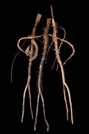 Moustapha Dimé, Danse contemporaine, 1995, bois, métal, corde, 240 x 120 x 80 cm. Crédit photo Fondation Blachère