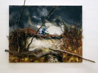 Passion de l'art, galerie Jeanne Bucher Jaeger depuis 1925 au Musée Granet - Paul Rebeyrolle, l'étang à l'automne, 2001