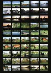 Peter Fischli David Weiss, Images de Visible World