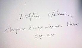 Delphine Wibaux, Absorptions lunaires - migrations diurnes - 2013-2017 - Show Room - Art-O-Rama 2017, Marseille