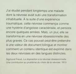 Document Bilingue, vue de l'exposition au Mucem - Centre de conservation et de ressources (CCR).