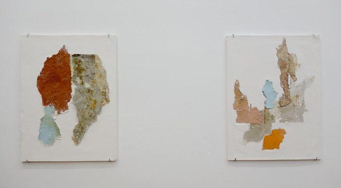 Manoela Medeiros, Continent IV et III 2017 - Falling Walls - Double V Gallery