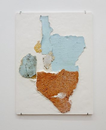 Manoela Medeiros, Continent II 2017 - Falling Walls - Double V Gallery