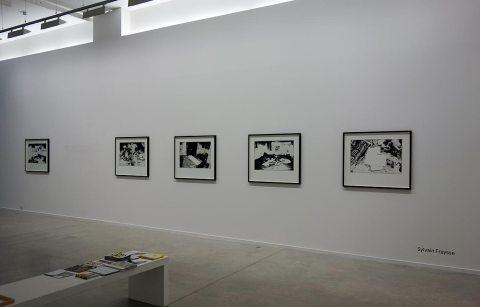 Sylvain Fraysse - Galerie Vasistas (Montpellier) - Drawing room 017 - La Panacée Montpellier